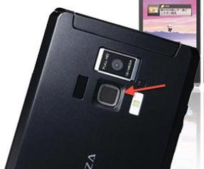 Regza T-01D Phone