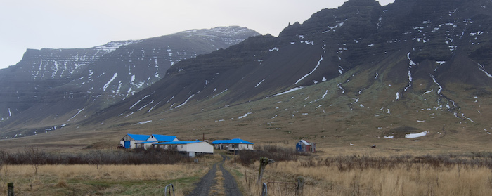 Roadside Iceland View
